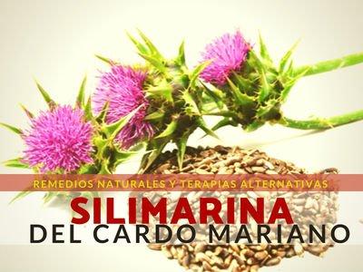 Silimarina del Cardo Mariano