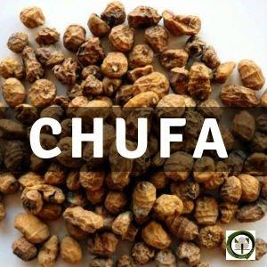 Chufa, Planta Medicinal