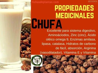 Chufa-propiedades