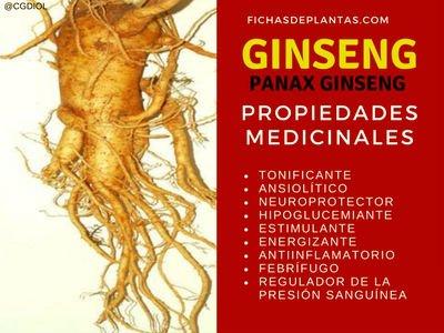 Ginseng Propiedades Medicinales