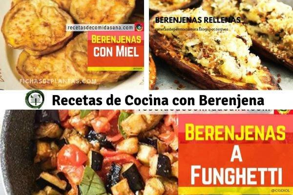 Berenjena, Recetas de Cocina