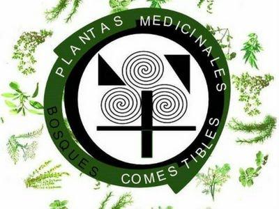 Indice de Fichas de Plantas
