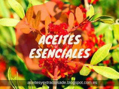 Listada de Aceite Esenciales en Fichas de Plantas