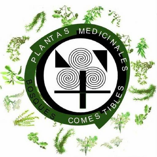 Logo de Fichas de Plantas