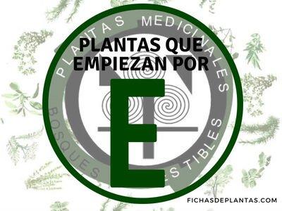 Plantas que empiezan por E