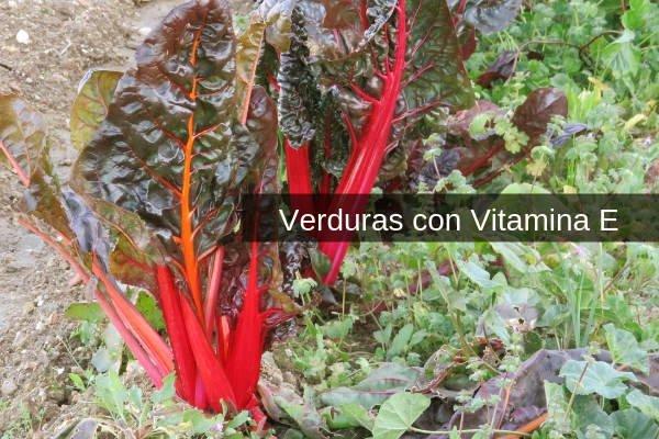 Verduras con Vitamina E