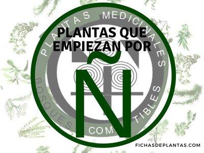 Plantas que Empiezan por Ñ | Índice de plantas