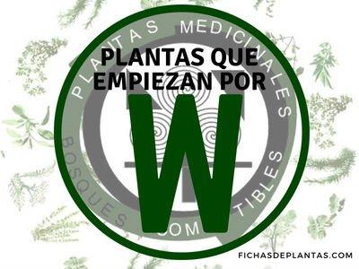 Plantas que empiezan con W