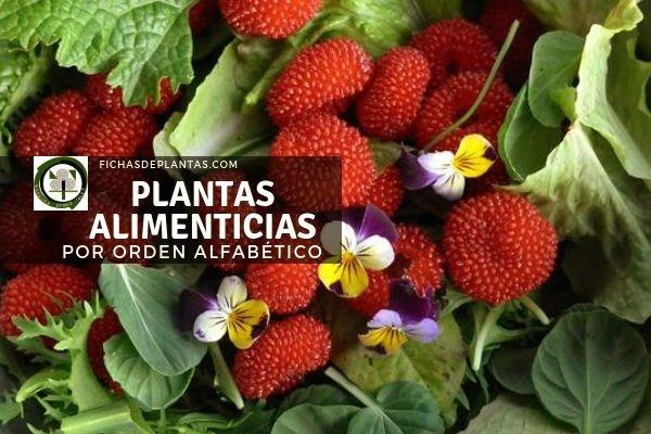Plantas Alimenticias, Lista de Especies