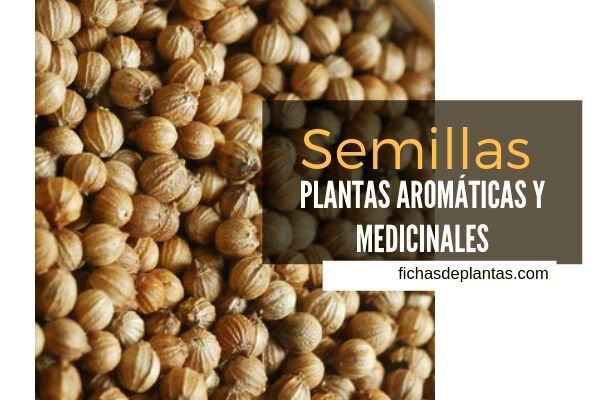 Semillas, Plantas Medicinales y Aromáticas