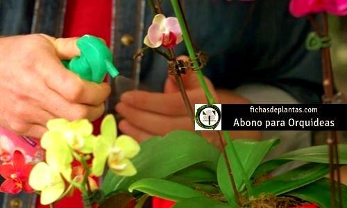 Orquídeas Abono