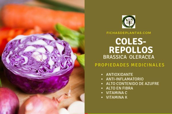 beneficios Coles