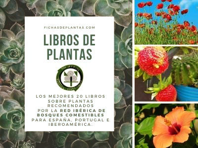 Libros de Plantas